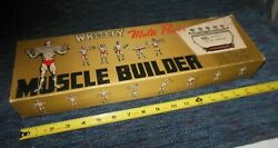 Vintage Whitely Muscle Builder 3 Spring Chest Pull Exercise Device Nos In Box