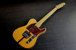 Hohner Madcat Telecaster The Prinz Model With Soft Case F/s Japan