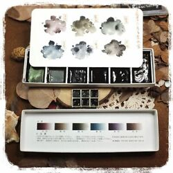 Chameleon Paint Watercolor Professional Painting Ink Color Drawing Art Supplies
