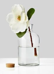 Serene Spaces Living Clear Glass Bottle Vase With Cork, Available In 3 Sizes