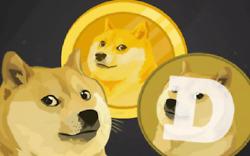 800 Dogecoin Doge Cryptocurrency Aka Dog Coin Mining Contract Under 24 Hours