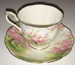 Royal Albert Blossom Time Bone China Cup And Saucer - Free Shipping