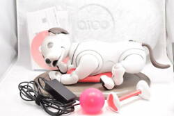 Sony Aibo Ers-1000 Entertainment Robot Dog Ivory White From Japan
