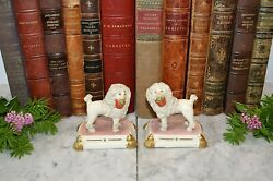 Antique Pair English Staffordshire Poodle Dogs Basket In Mouth Pink Base 19th C