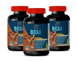 Muscle Tear Filler - Bcaa 3000mg - Essential Amino Pre Workout 3 Bottle