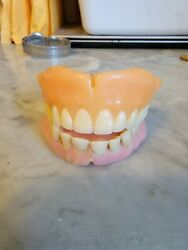 Used Set Of Menand039s Actual Dentures False Teeth May Be Two Half Sets