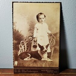1880s Cabinet Card Photo Of Young Girl With Her Pet Dog From Horton Ks