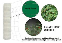 Trellis Netting 4and039x3280and039 Plastic Plant Support Garden