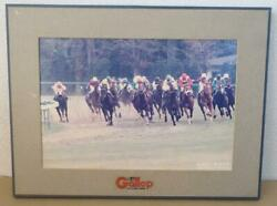 Horse Racing Pictures Glass Wonder The 43rd Arima Kinen G1