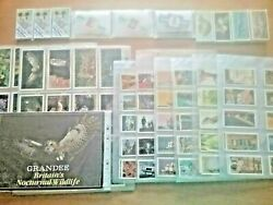 Collection Of Sets Of Brooke Bond Tea Cards Grandee Cigars And Cigar Bands
