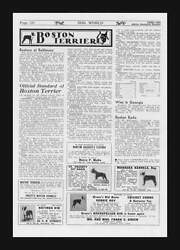 BOSTON TERRIER DOG Breeder news Stardards ads 3 pgs.  original 1935