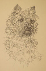 CAIRN TERRIER DOG ART LITHOGRAPH #41 Kline adds your dogs name free. BREED GIFT