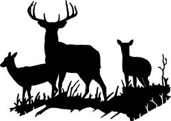 DEER BUCK DOE DEER FAMILY WALL DECAL HOME DECOR LARGE HUNTING 18quot; X 25quot;