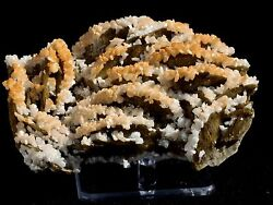 4.5 Bright Siderite And Calcite Mineral Display Specimen From China