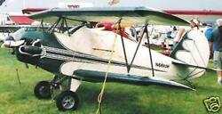 Fisher Youngster Aircraft Airplane Desktop Kiln Wood Model Free Shipping Large