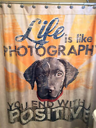 NEW Black Labrador Retriever Dog Days Puppy Shower Curtain Life Like Photography