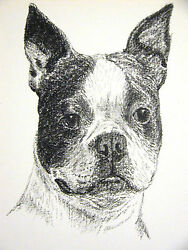 Francis Wardle 1935 BOSTON TERRIER Vintage DOG Print Matted