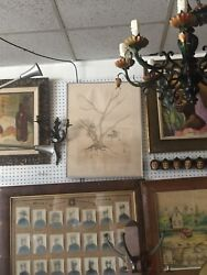 Vintage Salvador Dali Tree Etching Painting Sold As Is