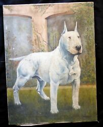 Antique 1880-1910 Victorian Dog Painting Bull Terrier