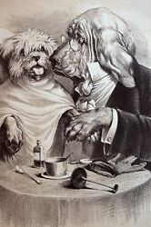 Veterinarian 1886 DOG in EXAMINATION ROOM DOCTOR VET w SPECTACLES Matted Print
