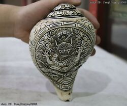 Nepal Buddhism Old Conch Shell Hand Carved Dragon Statue Shell Trumpet Conch