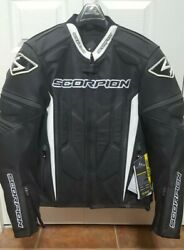 Scorpion EXO Clutch Perforated Leather Jacket Brand New with tag. Never worn C $549.95
