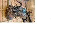 Life Size Mythical Dragon Sculpture
