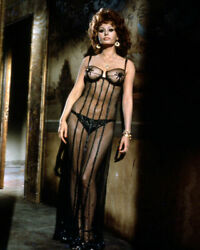 235804 Sophia Loren Sensational In See Thru Outfit And Panties Print Poster Ca