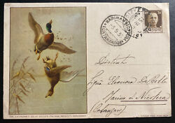 1936 Cagliari Italy Advertising Postcard Cover Wounded Ducks Gun Powder