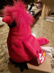 Rare Authentic Beanie Baby Mac The Cardinal Limited Edition Tag On Wing