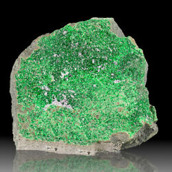 3.4 Uvarovite Sparkling Emerald Green Crystals To 1mm On Matrix Russia For Sale