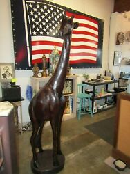 Stunning Hand Carved Bois Noir Wood Giraffe 6and039 3and039and039