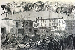 Bulland039s Head Horse Market Nyc Charles Hill Hamilton E.a. Fitch 1869 Print Matted
