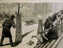 New York City MAD DOG EPIDEMIC Veterinarian Police 1886 Print Matted and Story