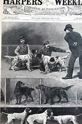 Dog Show 1886 Setters and Pointers Bang Tammany Roderigo Nora Elcho Matted Print