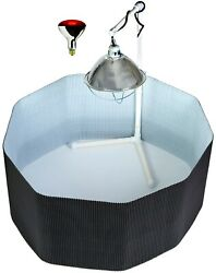 Deluxe Chick Brooder Kit Poly Corral Pen And Bulb And Lamp And Stand For Baby Chickens