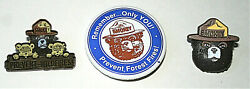 3 Smokey The Bear And Friends Prevent Forest And Wildfires Pin Button Nos New 2000's