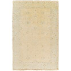 Surya Atq-1011 Antique Area Rug 5and0396and039 X 8and0396and039 Khaki/pale Blue