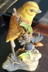Boehm Porcelain Birds Yellowhammer With Blackthorn Emberiza Citrinella