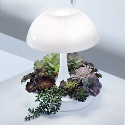 Led Grow Lamp Planter With Timer