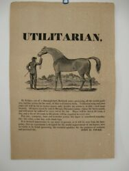 Utilitarian / Large Cut 5 X 8 1/2 Inches Of Beautiful Stallion Being Held Signed