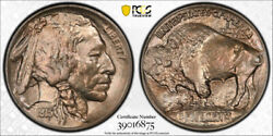 1913 S 5c Type 1 Buffalo Head Nickel Pcgs Ms 65 Uncirculated Cac Approved Nice