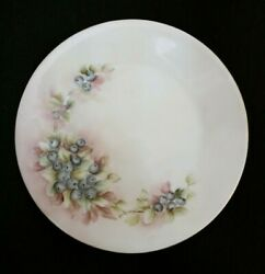 Beautiful Hand Painted Floral Berries Hutschenreuther Selb Bavaria Plate Signed