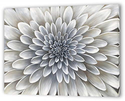 Yihui Arts White Flower Canvas Wall Art Painting Hand Painted Floral Canvas for