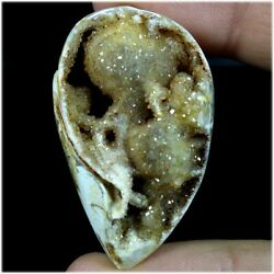 Natural Snail Fossil Druzy Agate Expensive Stone Fancy Cab 103.25cts 26x44x19mm