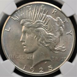 1925 Peace Dollar Ngc Ms 63 Silvery Satin Smooth Great Strike Intriguing Subtle