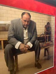 Authentic Hand Signed And Framed Photo Of Tony Soprano From Hit Series Sopranos