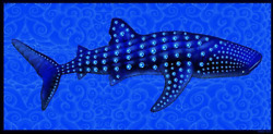 Emek Whale There Is Only One Poster Limited Edition Signed/numbered