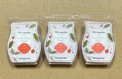 Scentsy Wax Bars Strawberry Basil Lot Of 3 Life's A Garden Collection