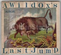 American Buffalo Bison Hunt Wild Animals Antique Graphic Art Childrenand039s Spelling
